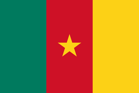 Picture of Cameroon Flag 4x6