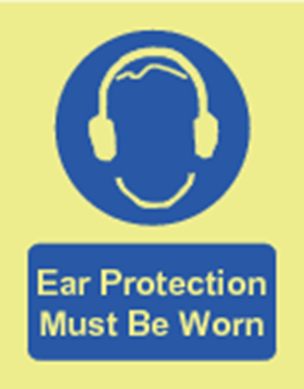 Picture of Ear protection must be worn