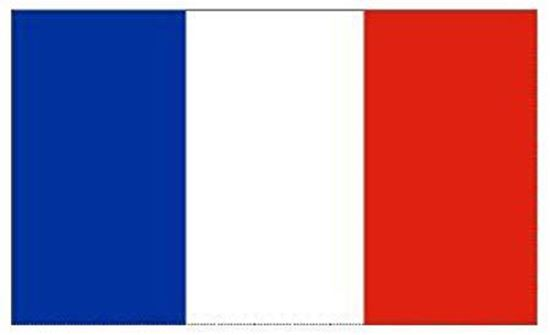 Picture of France Flag 3x5