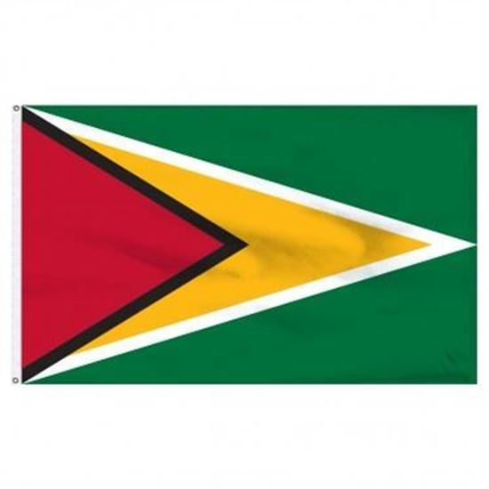 Picture of Guyana Flag 3'x5'