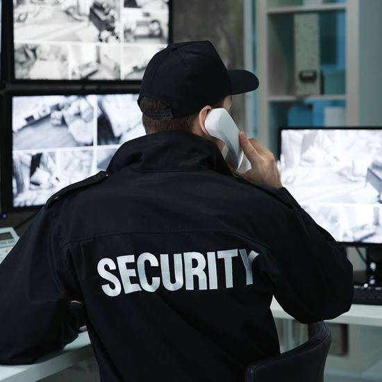 Picture of Security Search, Screening and Sweeping Techniques for Vessels, Ports, Plants and Facilities